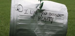 Of Beauty