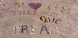 This Beach Its Our Dream